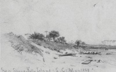 Folly's Wild Dunes